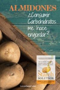 dieta-carbohidratos-almidones-McDougall