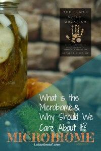 human-microbiome-health-disease