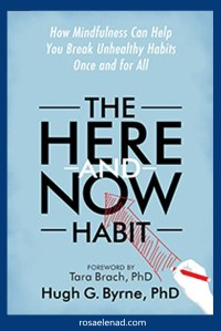 The Here and Now Habit Book Cover