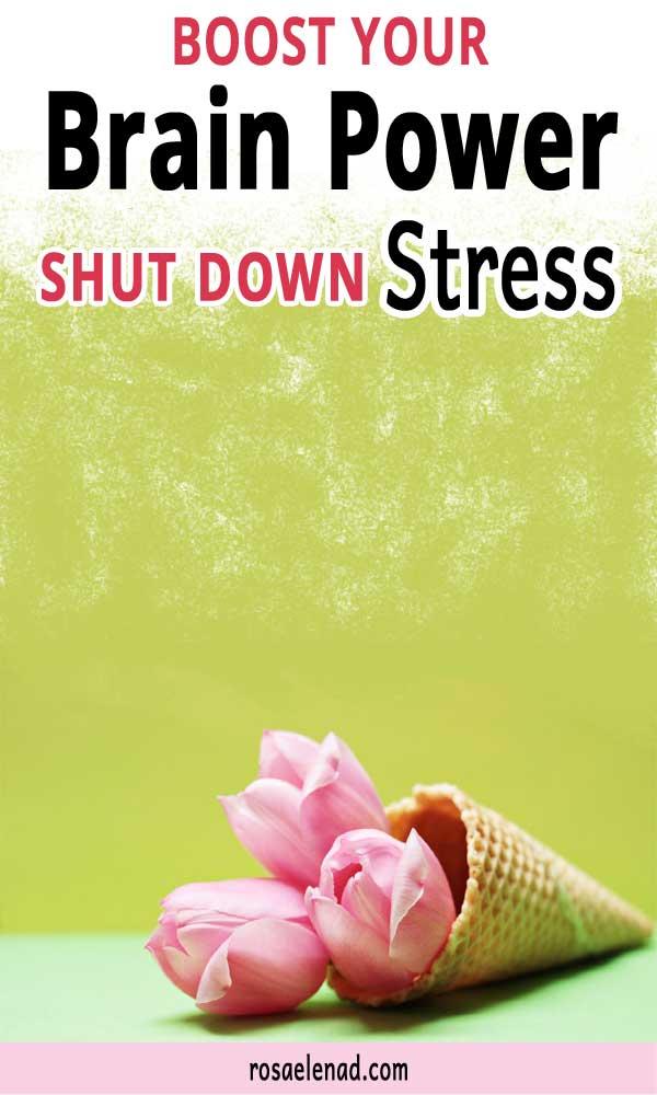 Shut down stress - Boost your brain-mind power