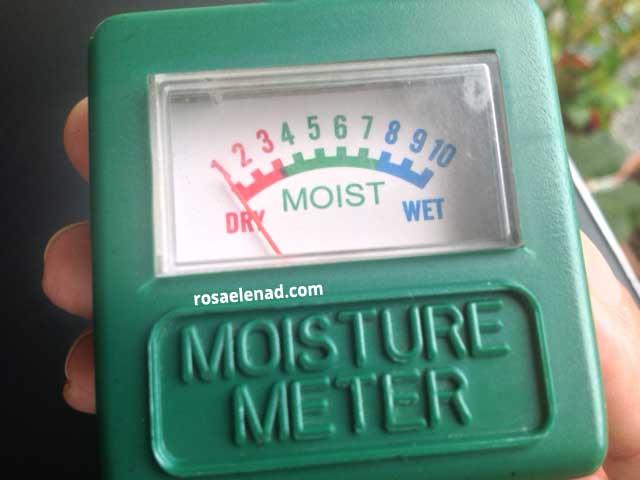 moisture meter at rosaelenad.com